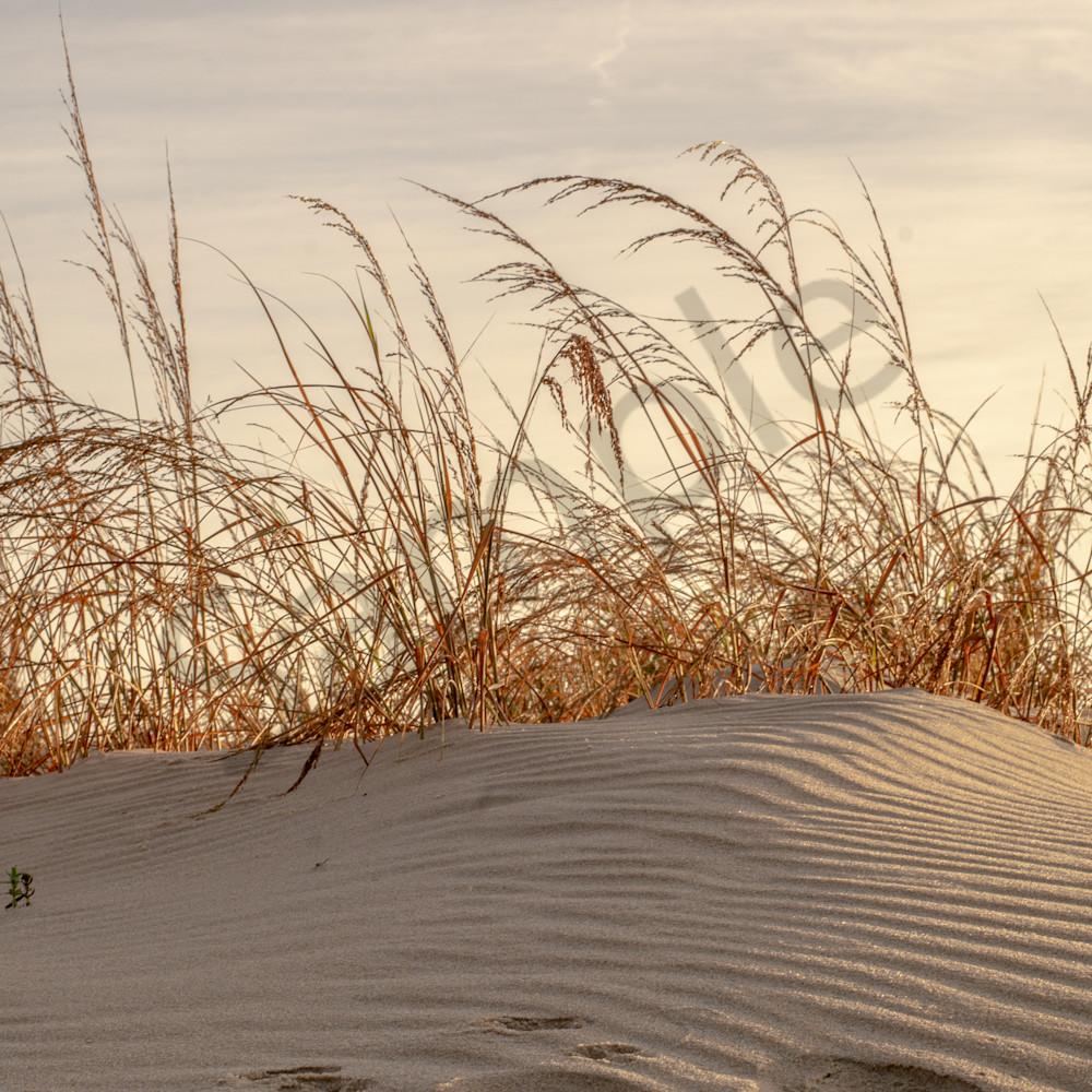 Fenwick island the dunes hknfev