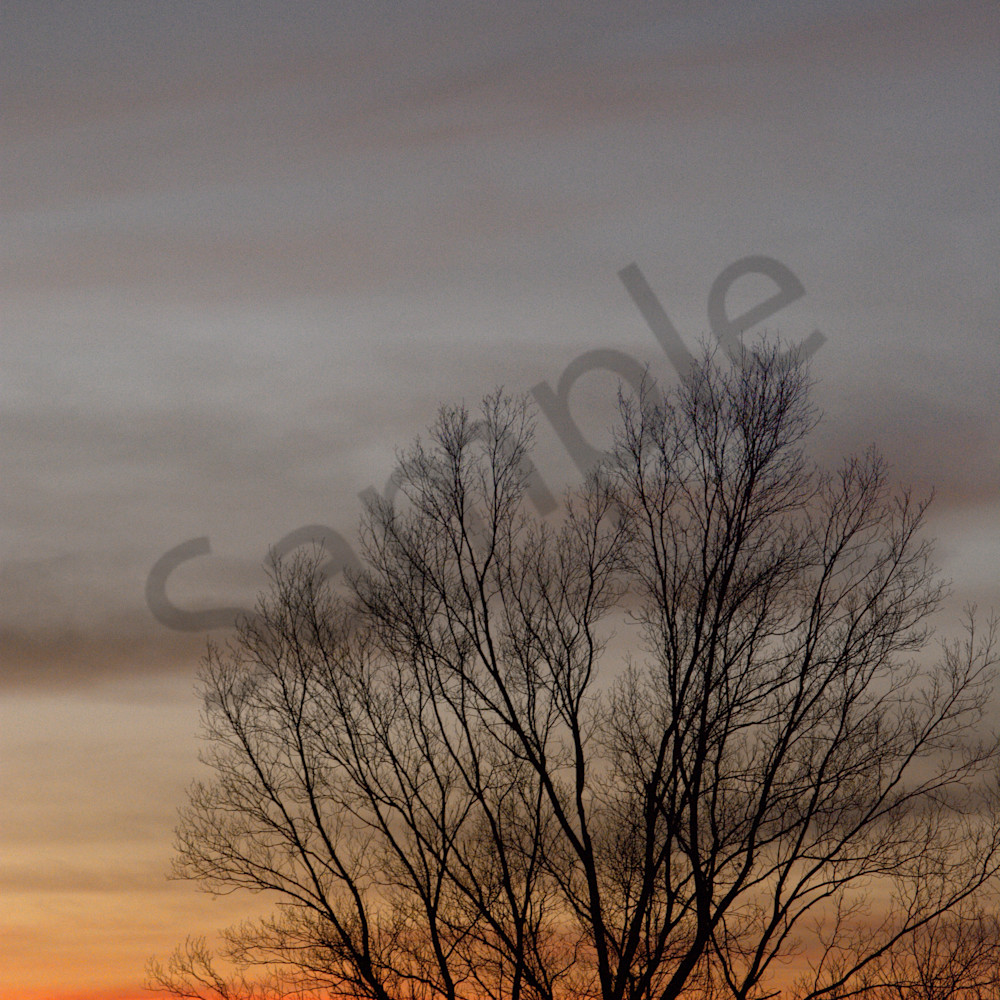 Sunset on the farm aqndzi