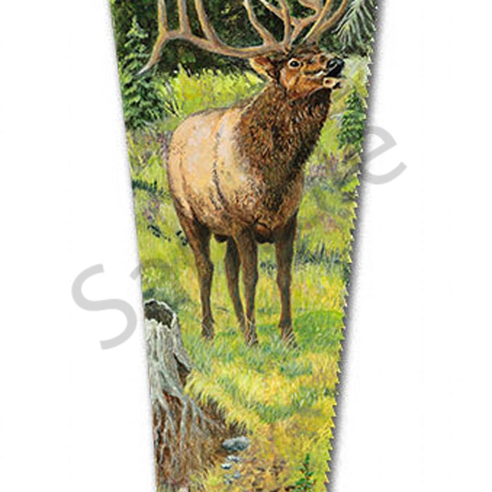 Bull elk creek ajtpuk
