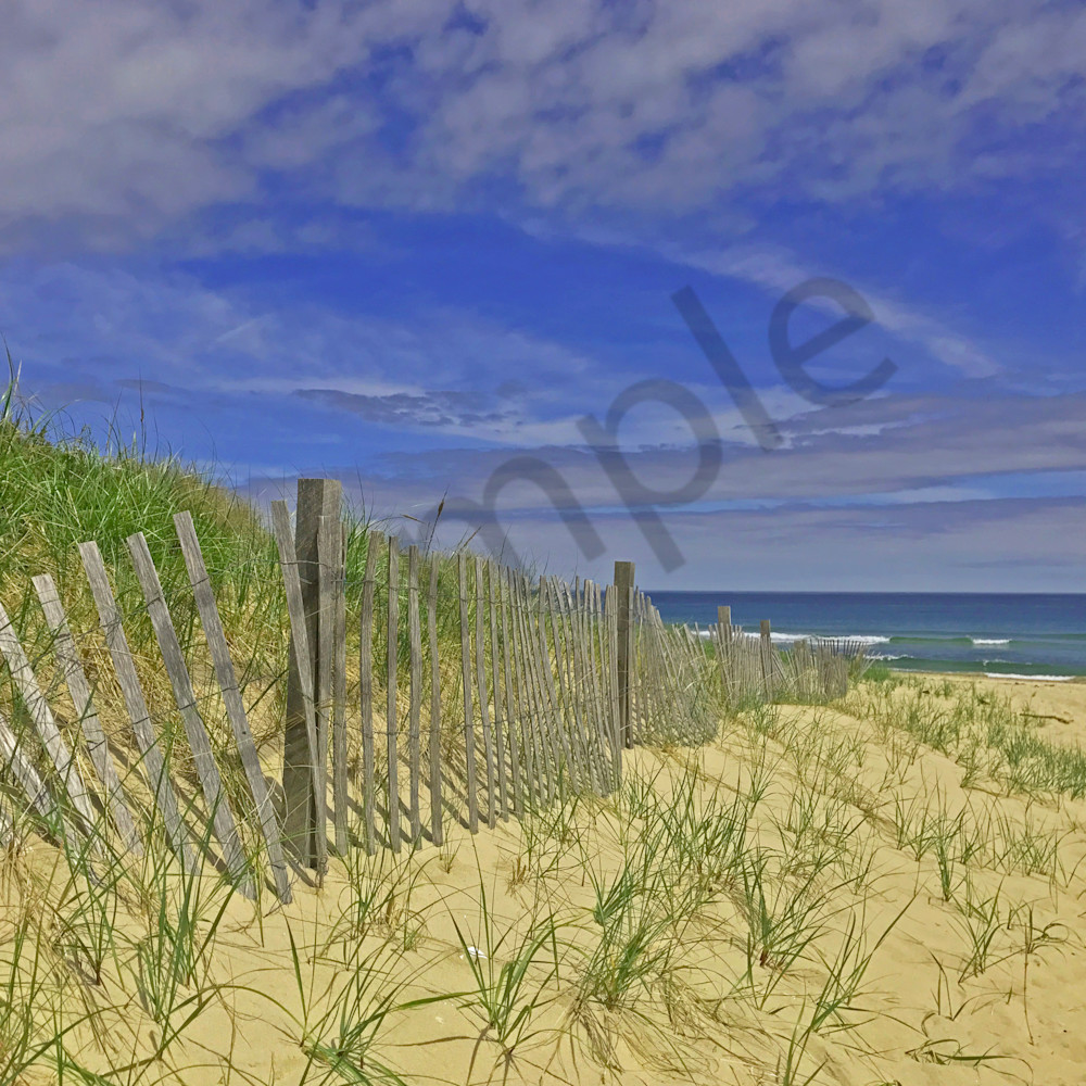 Follow that fence lfu1j5