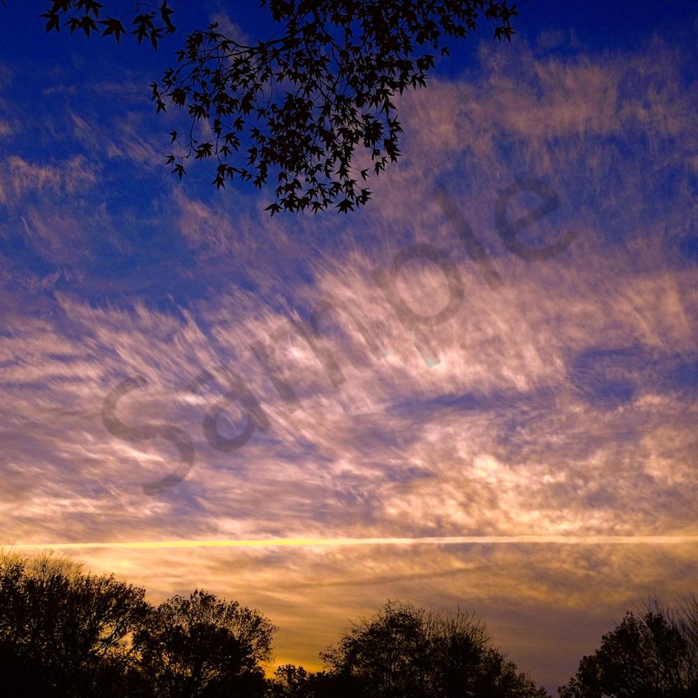 November sky website d9lzso