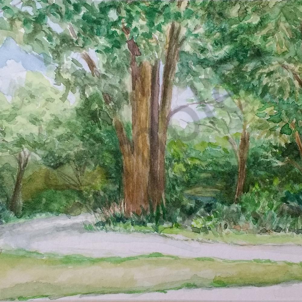 Oakwoods nature preserve by jennifer sowders wsdl1n