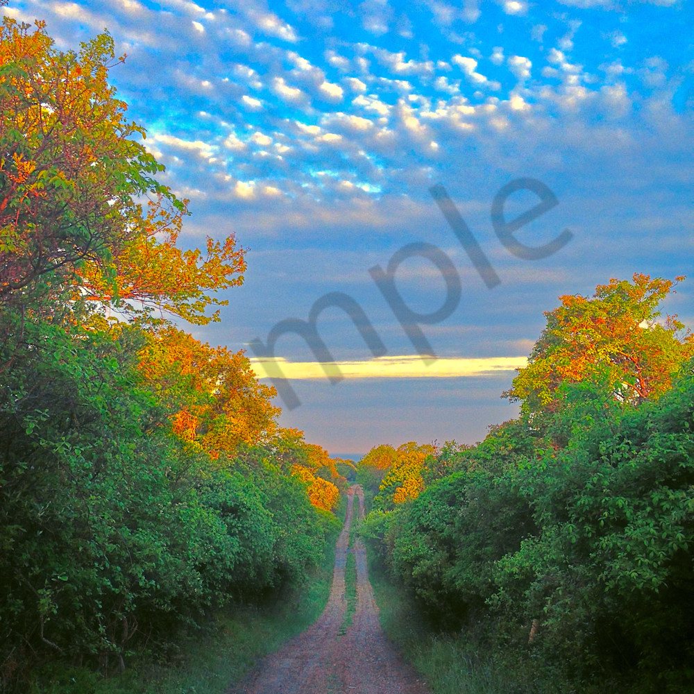 Road to the clouds df4uxg