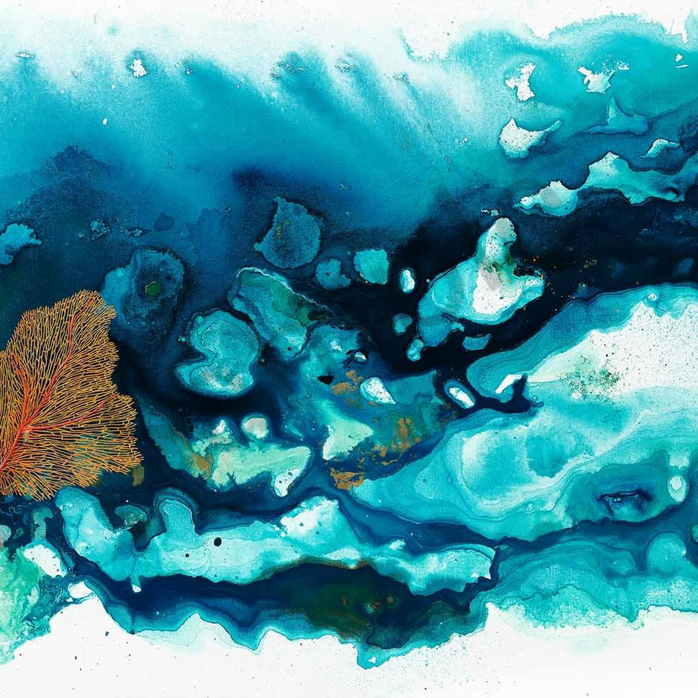 Donna maloney 018 tropical coral reef 4 2000px escmke