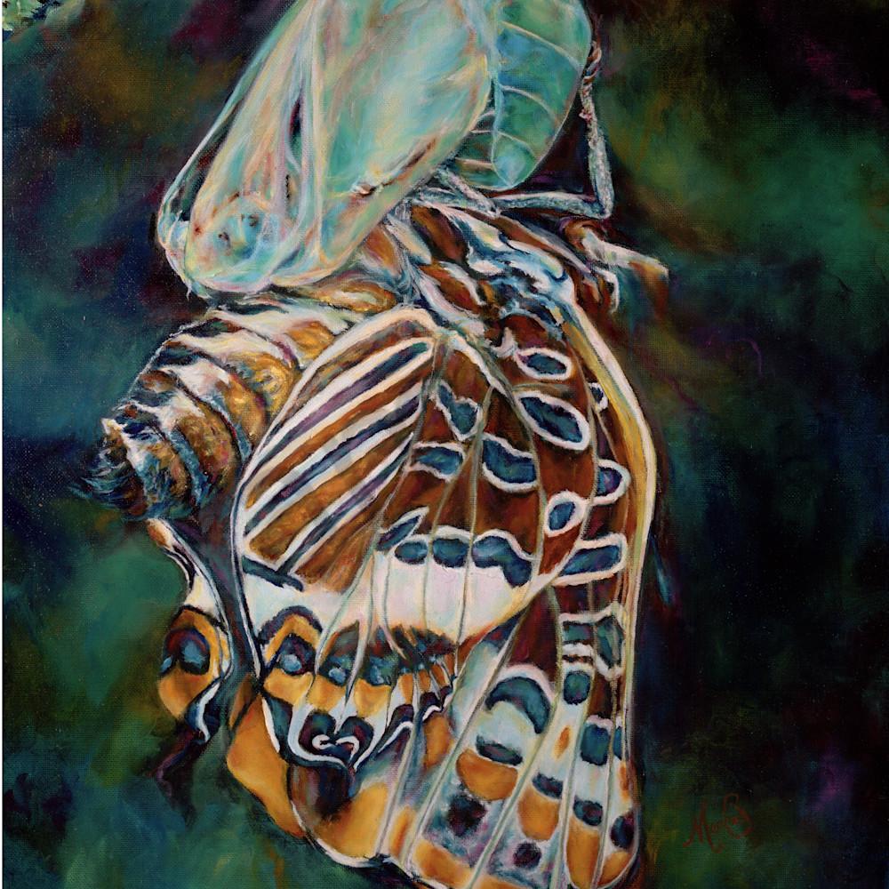 Metamorphosis by mary crawford kquexk