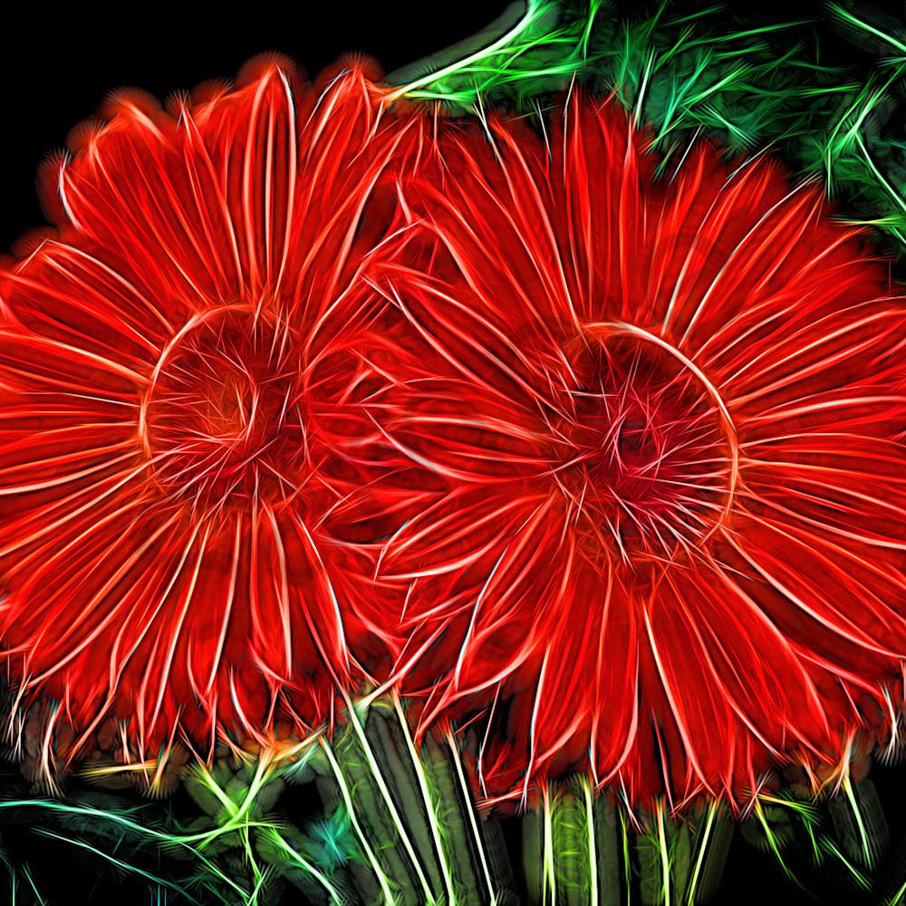 Electrifying daises biyaho