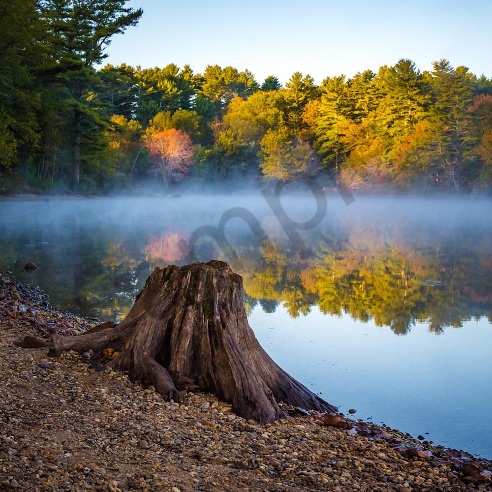 Morning on the pond2 tqpbxq