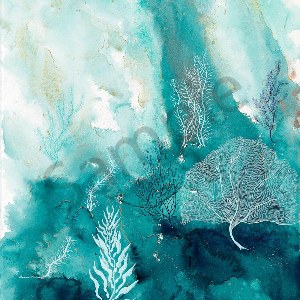 Donna maloney 017 coral reef 10 2000px sxydbx