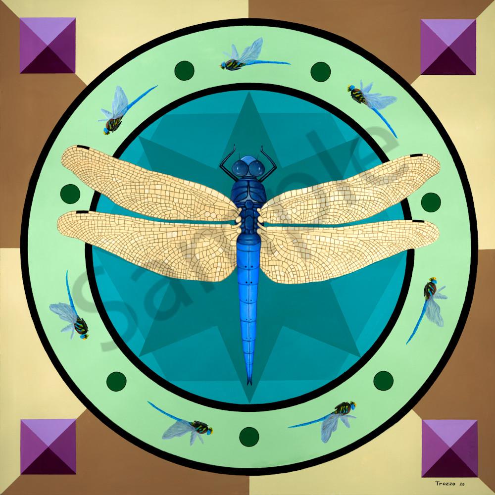 Dragonfly mandala asf 3 zzgm84