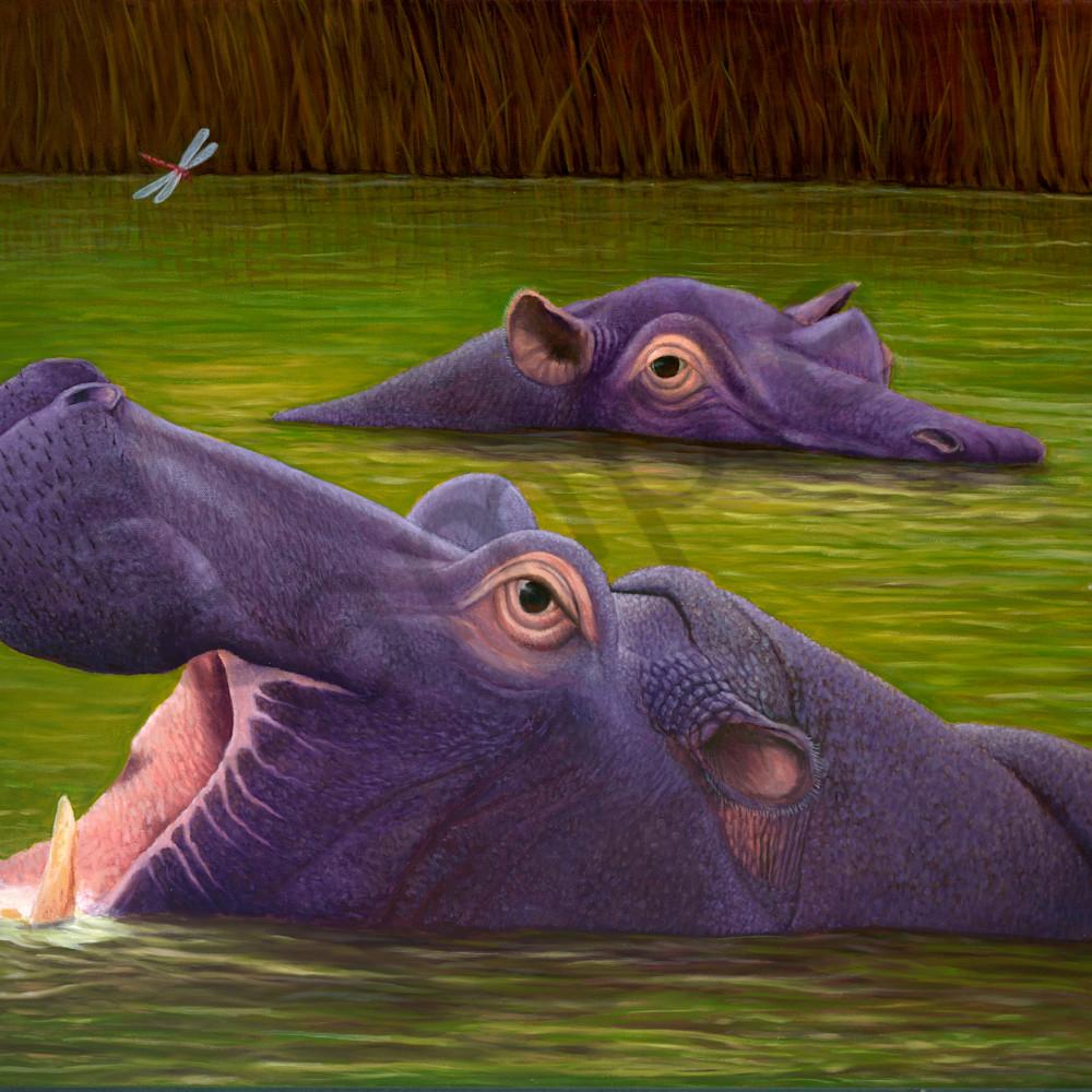 Hippos asf dwv1ez
