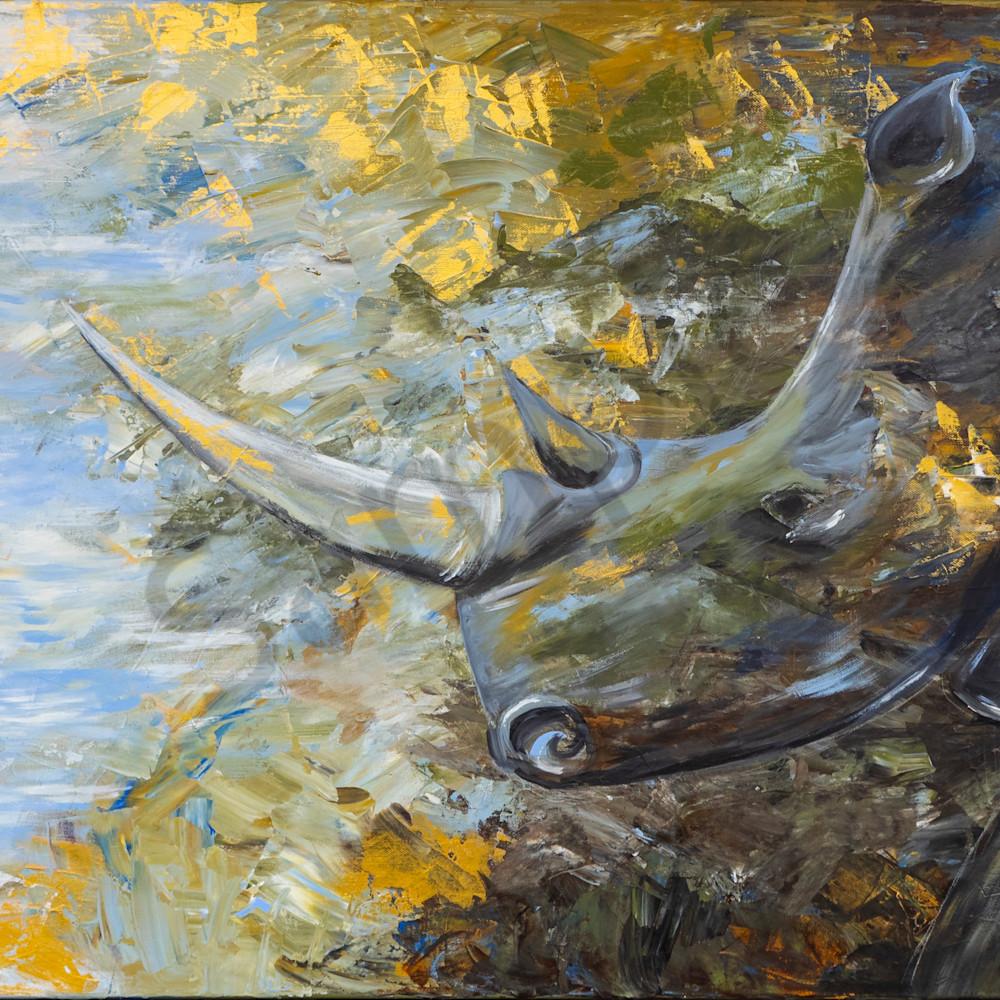 Rhino by angela gu%cc%88nther szbdqi