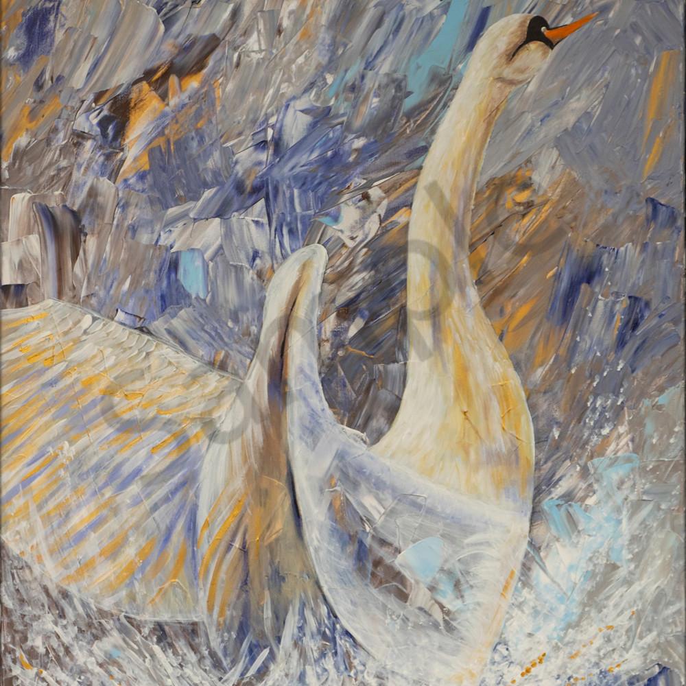 Swan by angela gu%cc%88nther vxv8ld