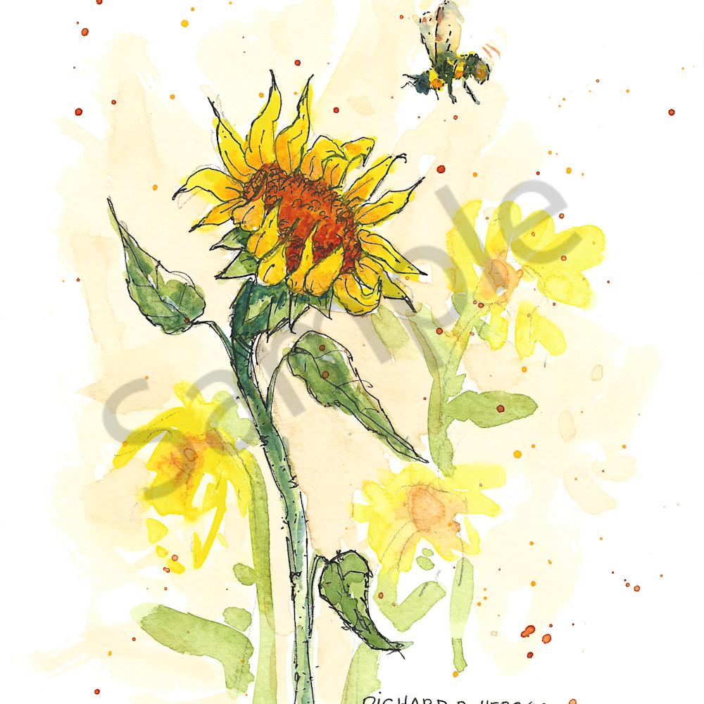 Bee 1 fm11xb