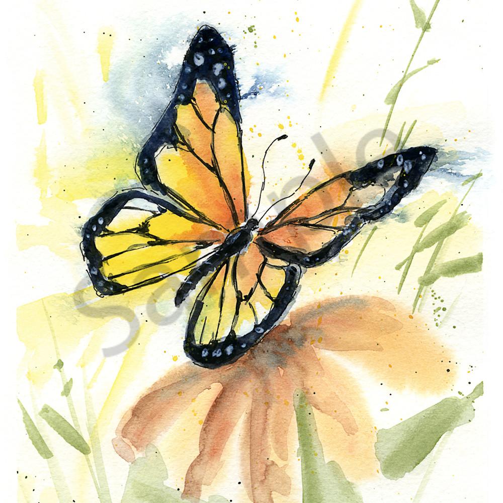 Butterfly 2 ufqkkz