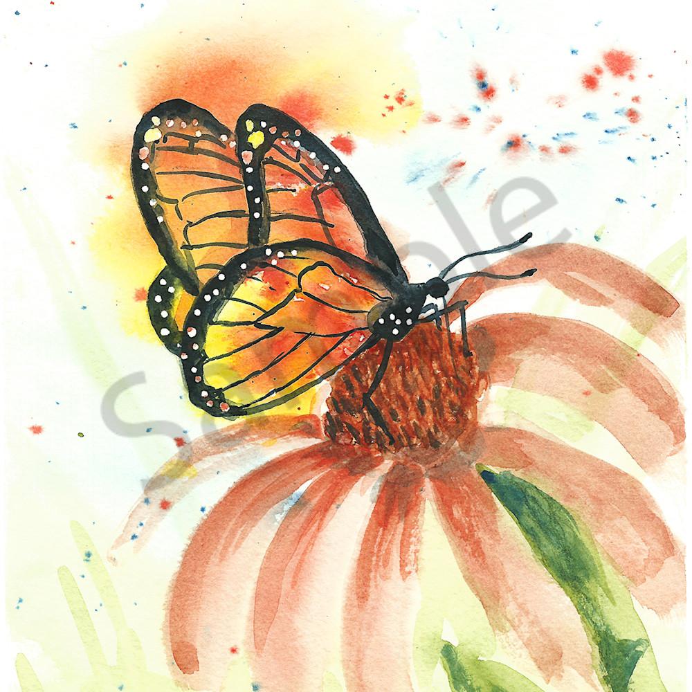 Butterfly 3 600 qynmcu
