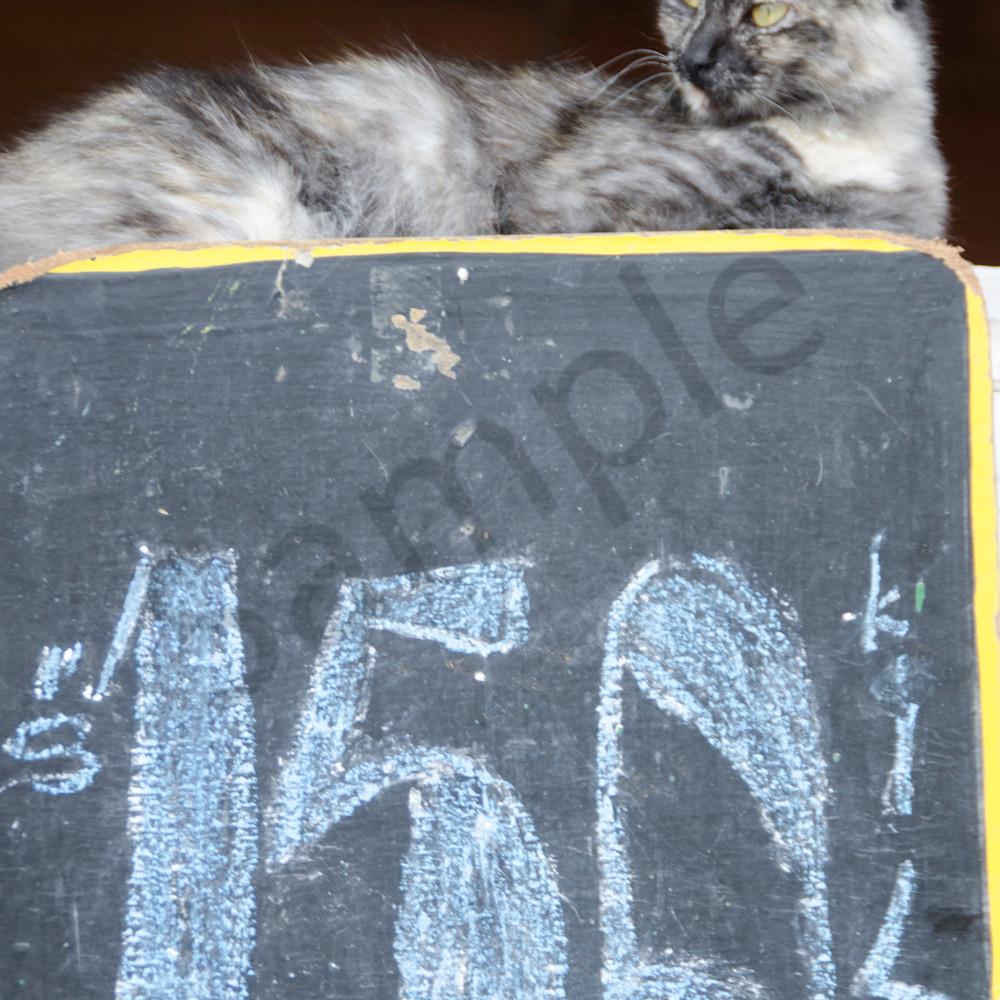 2013 chile 1603 okdyoo