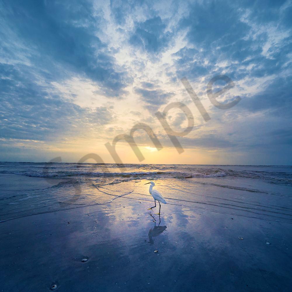Wiggins egret sunset 6x4 1440 web ustved