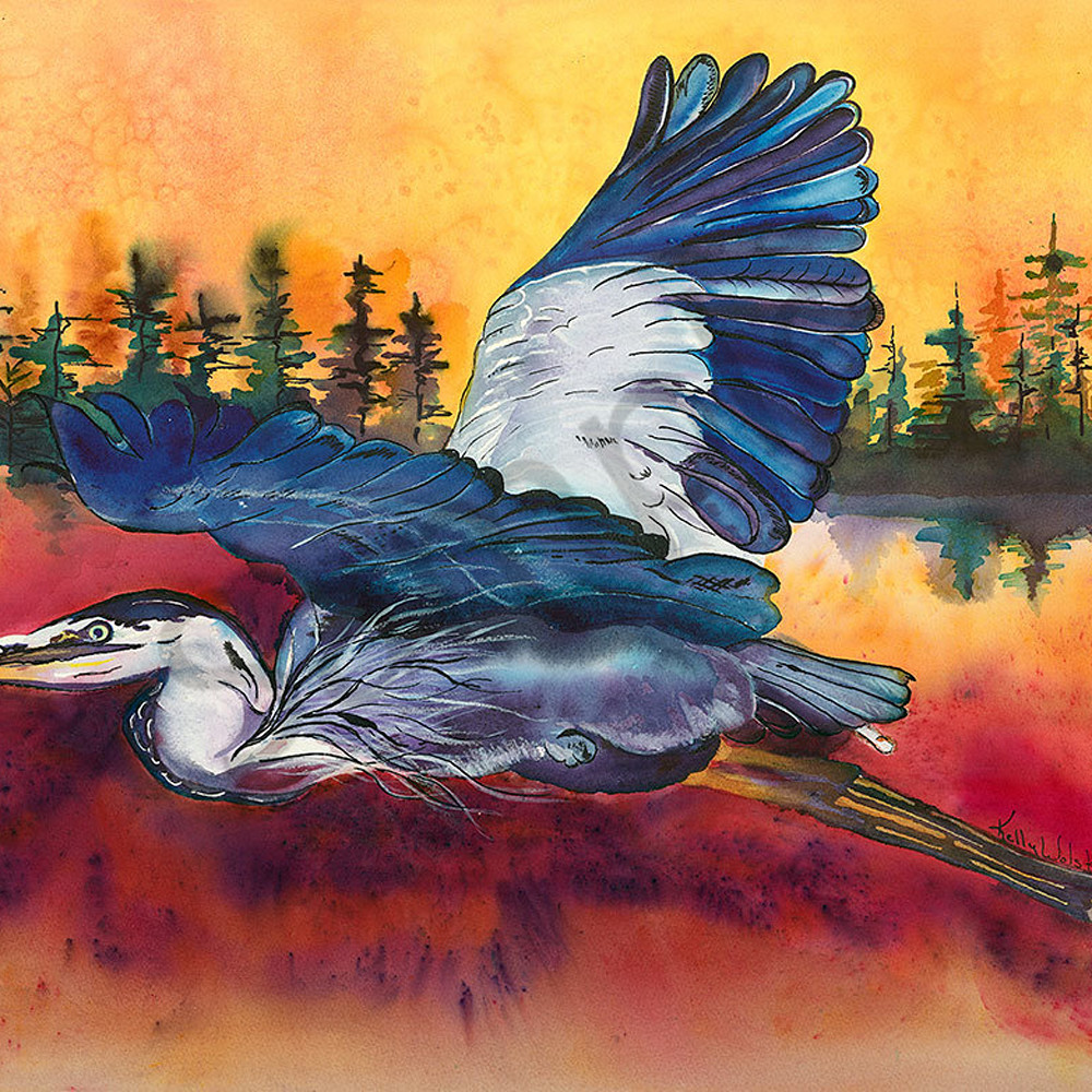 Great blue heron sunrise eyiveu