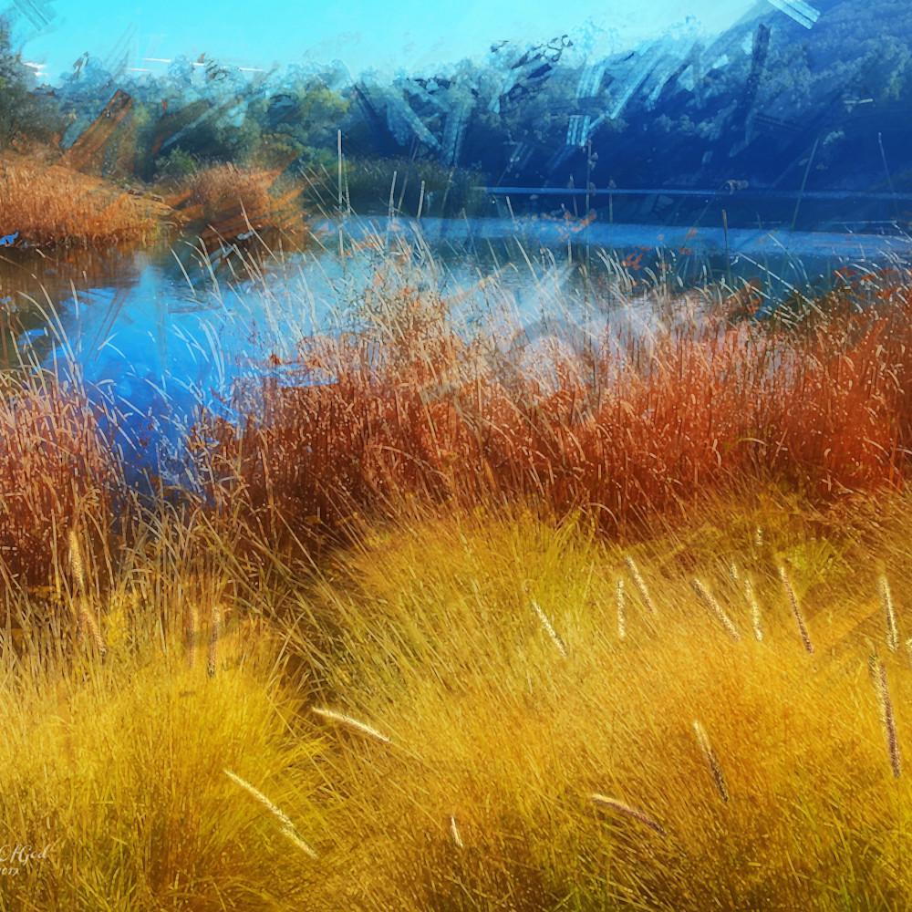 Img 7209 dixon lake winter reeds 2019   abstsract enlight384   ps paint daubs cmbn foxtails   art4theglryofgod ufyuef