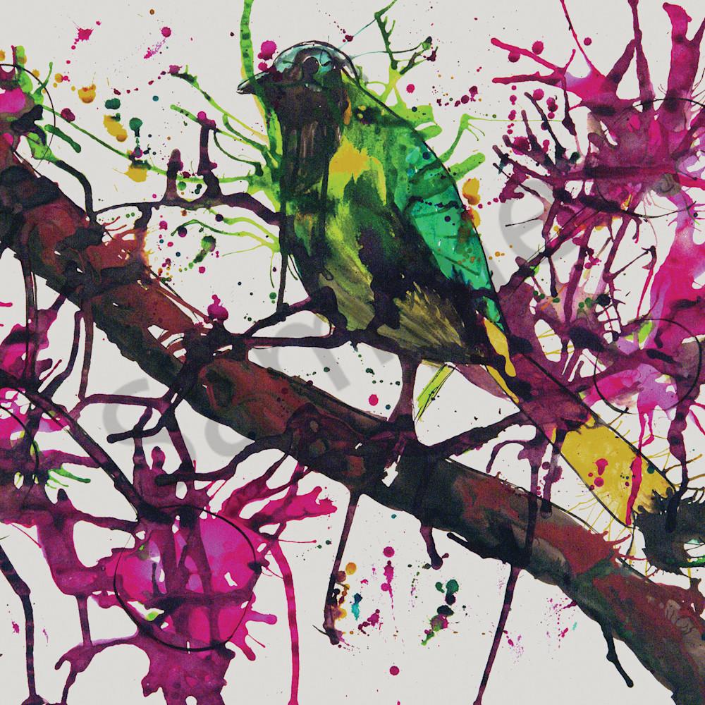Bird on a branch by rachel oxborough onzaxc