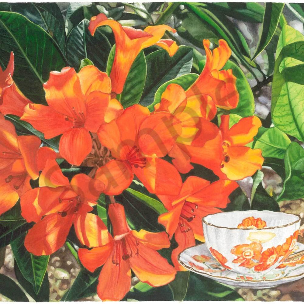 K rigby 045 tea garden 3 haswft