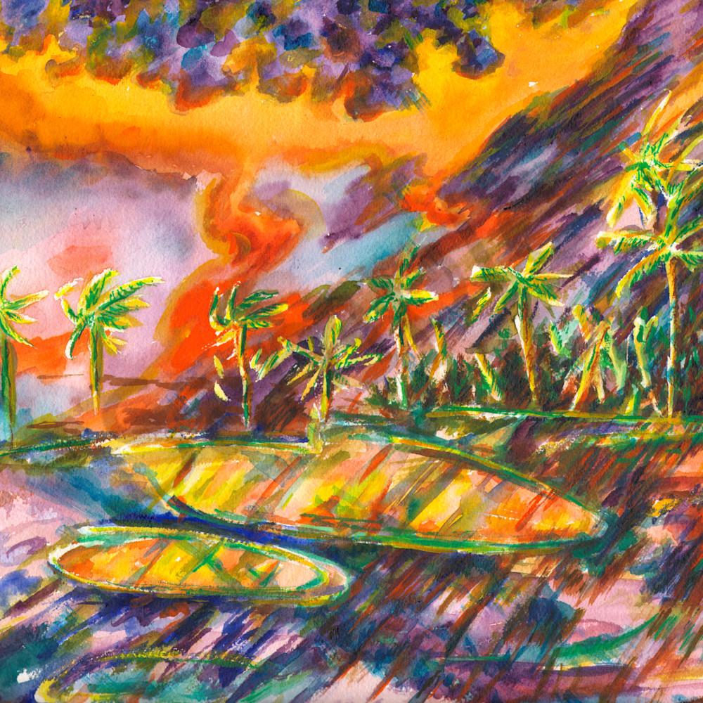 L17 palm dunesmbracho3x4 yg5zvp