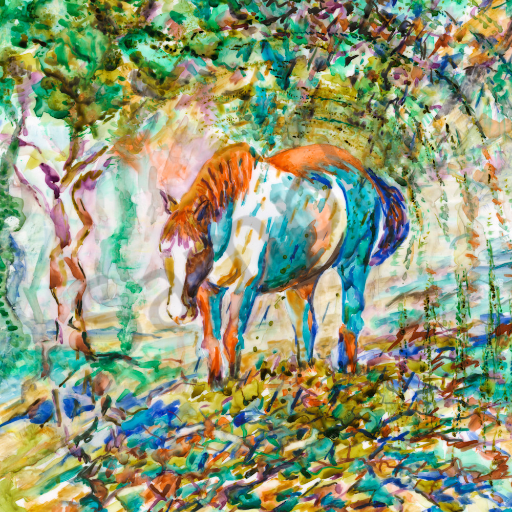 Y03 horsebluesmbracho3x4 lttuq7