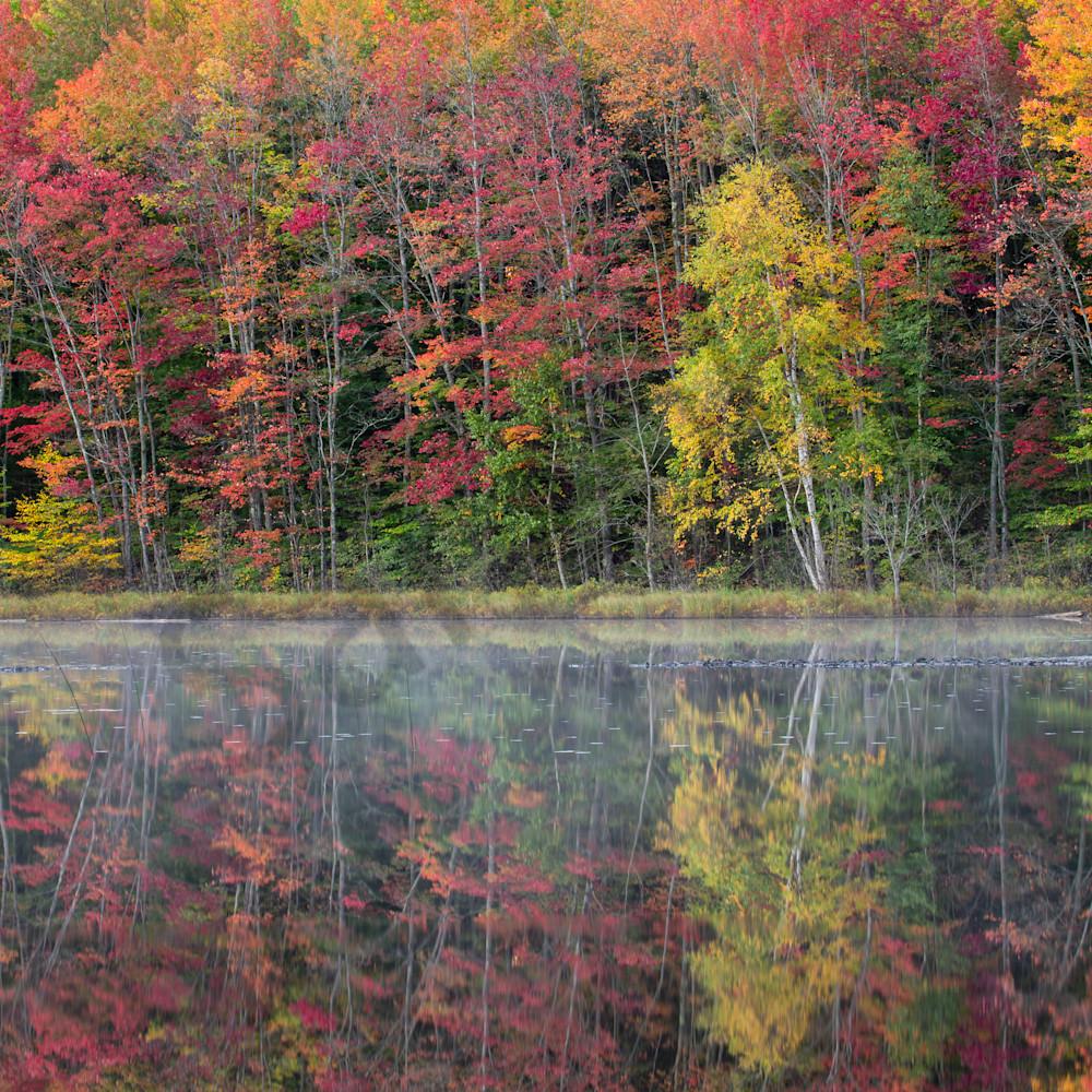 Autumn splendor 24x36 cmdk6k
