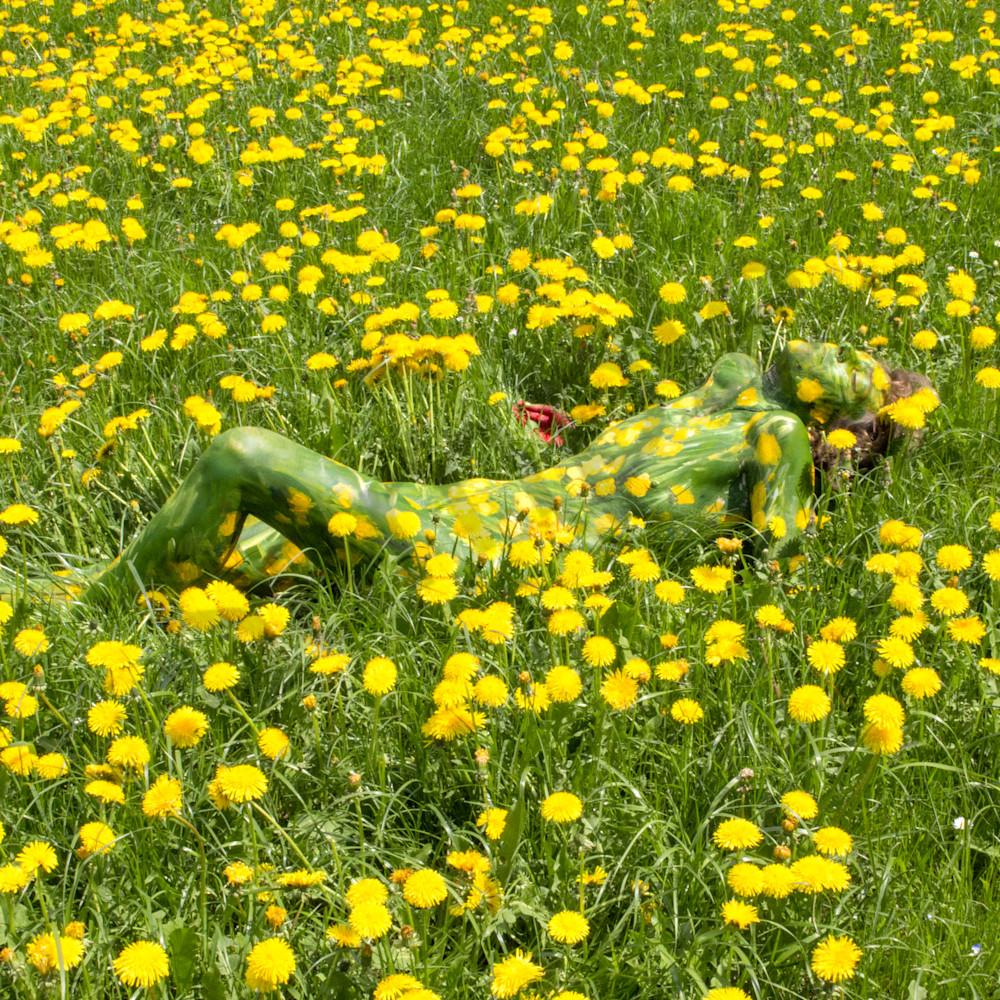 2018 dandelion field switzerland oyr1tk