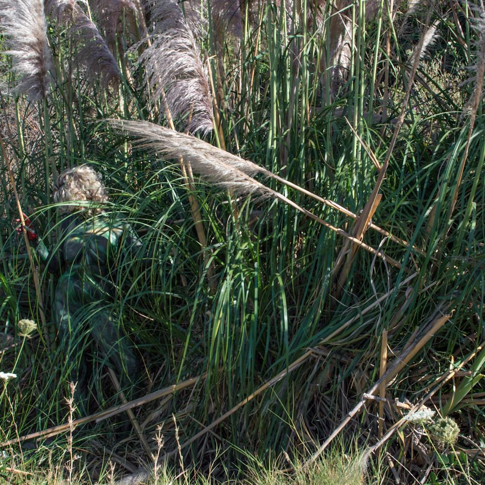 2017 willows california qrcktf