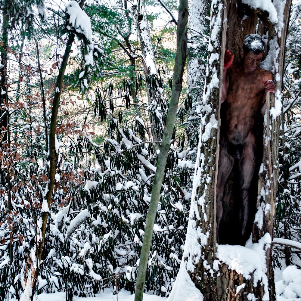 2014 winter.forest massachussetts ai0rzm