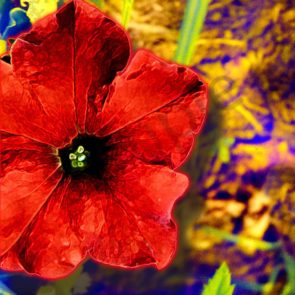 Flower 36 rvrhlr