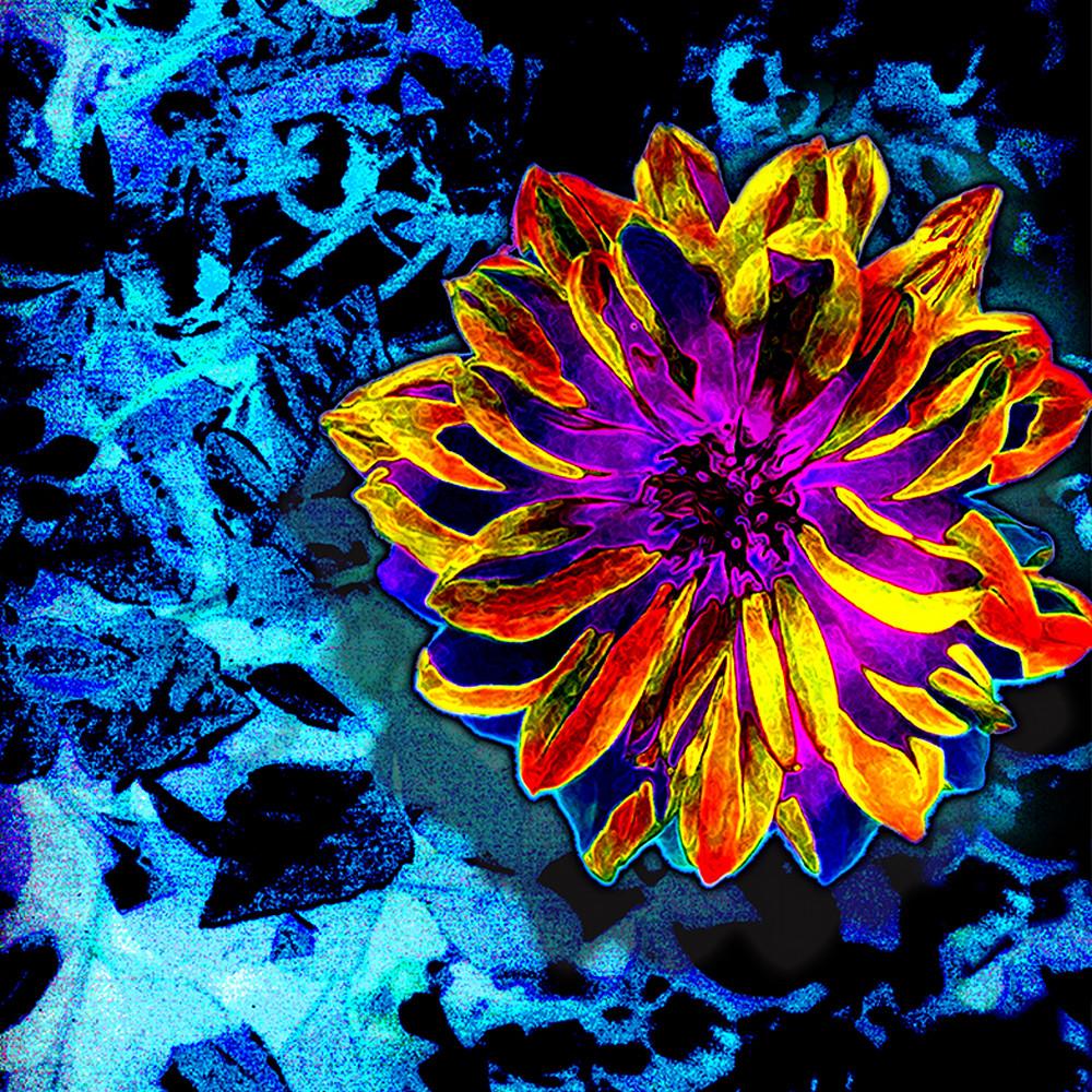 Flower 48 ce9tuy