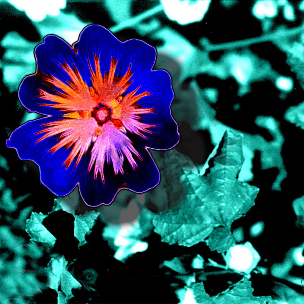 Flower 46 gouihe