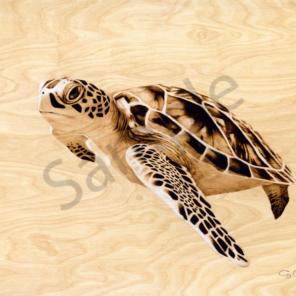 Revised art print turtleps ffvs3n