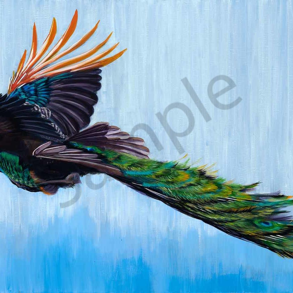 Priya gore 010 wings of fire 3 2000px vz4wg4