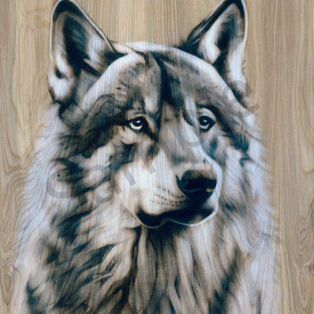 Wolf printps vgho97