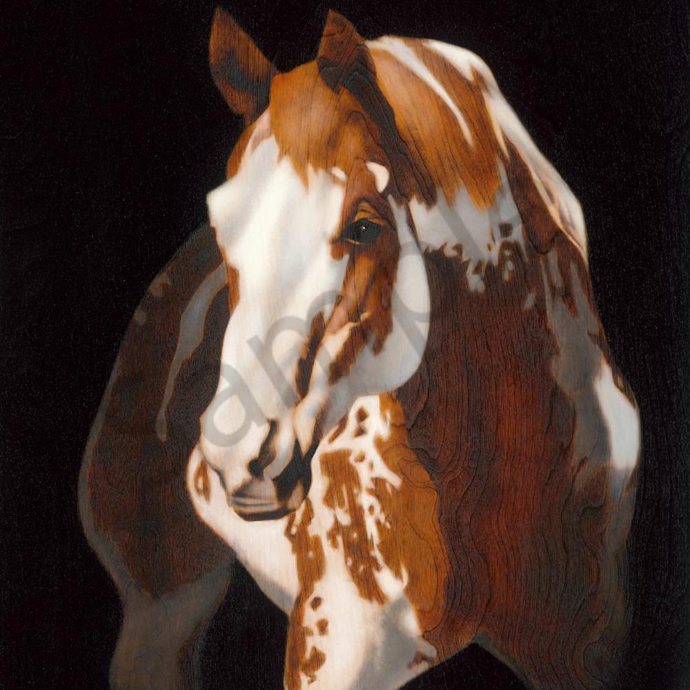 Painted horsefinal print bkvoig
