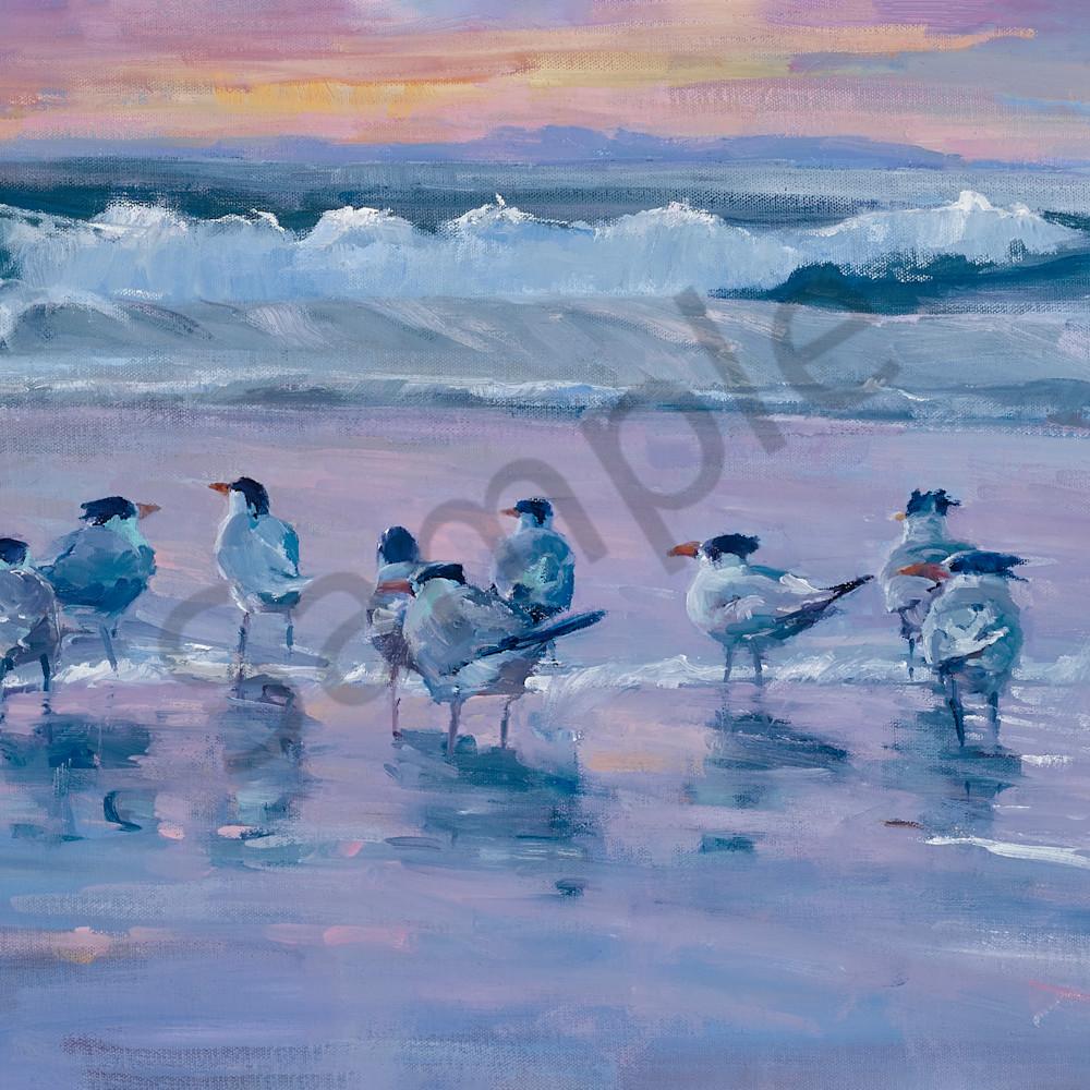 Toni danchik beach buddies sunset serenade 3015 iuqw0h