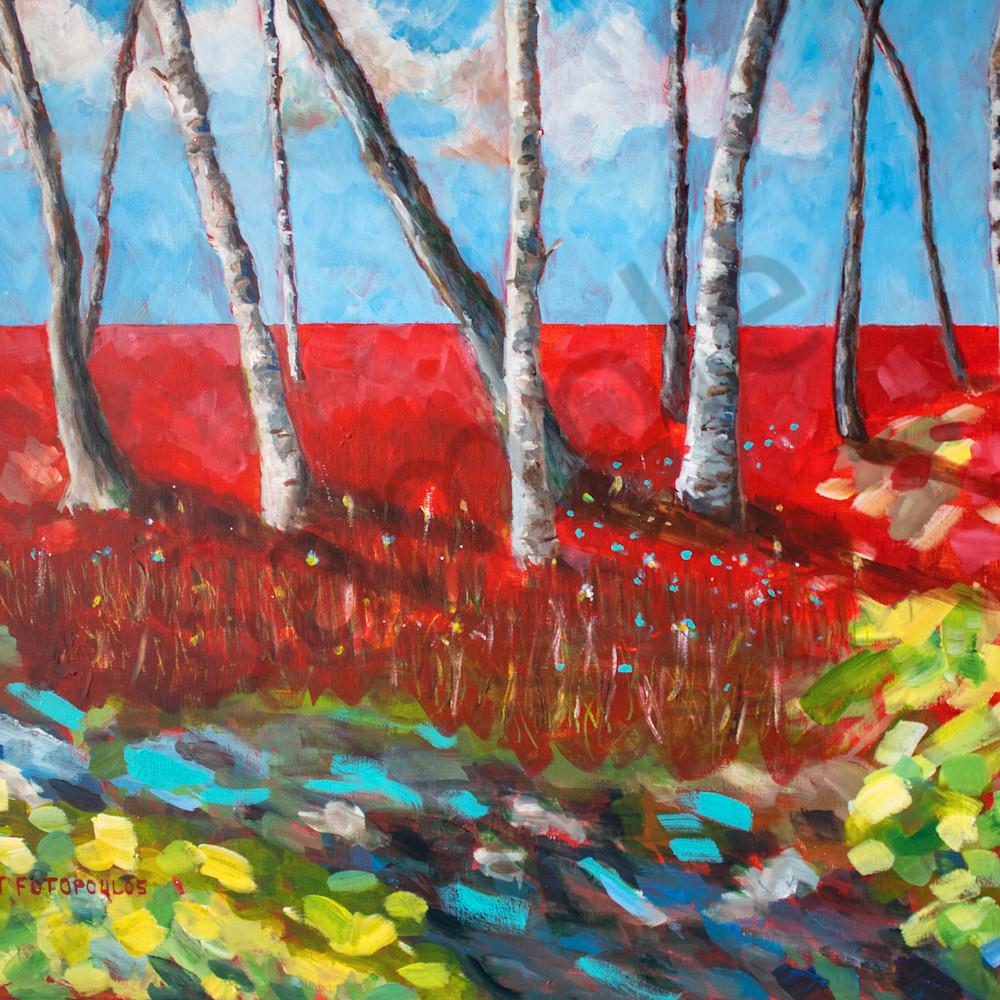 Spring birches by joan fotopoulos tttfnd