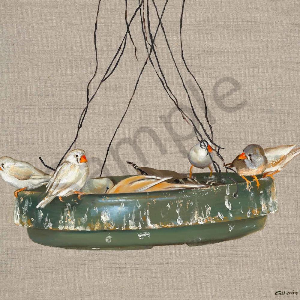 Catherine boreham 010 feeding finches 2000px b1nilo