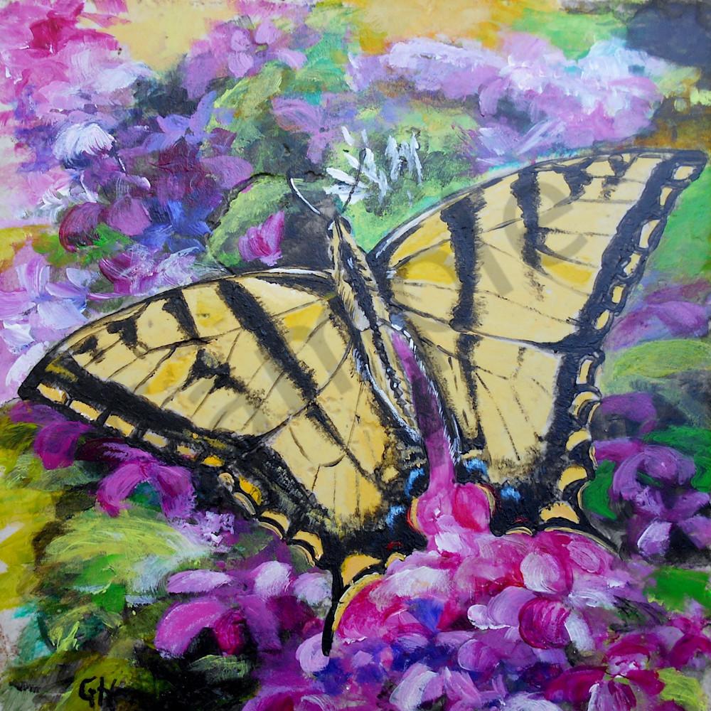 Yellow swallowtail by gina harding lmtqbl
