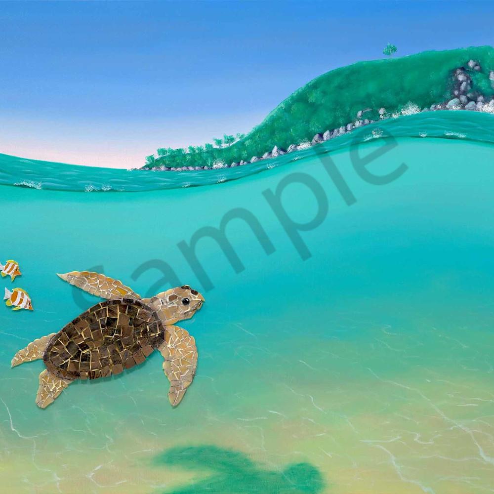 Glenn russell 009 loggerhead turtle at mudjimba island 2000px zz3yu5