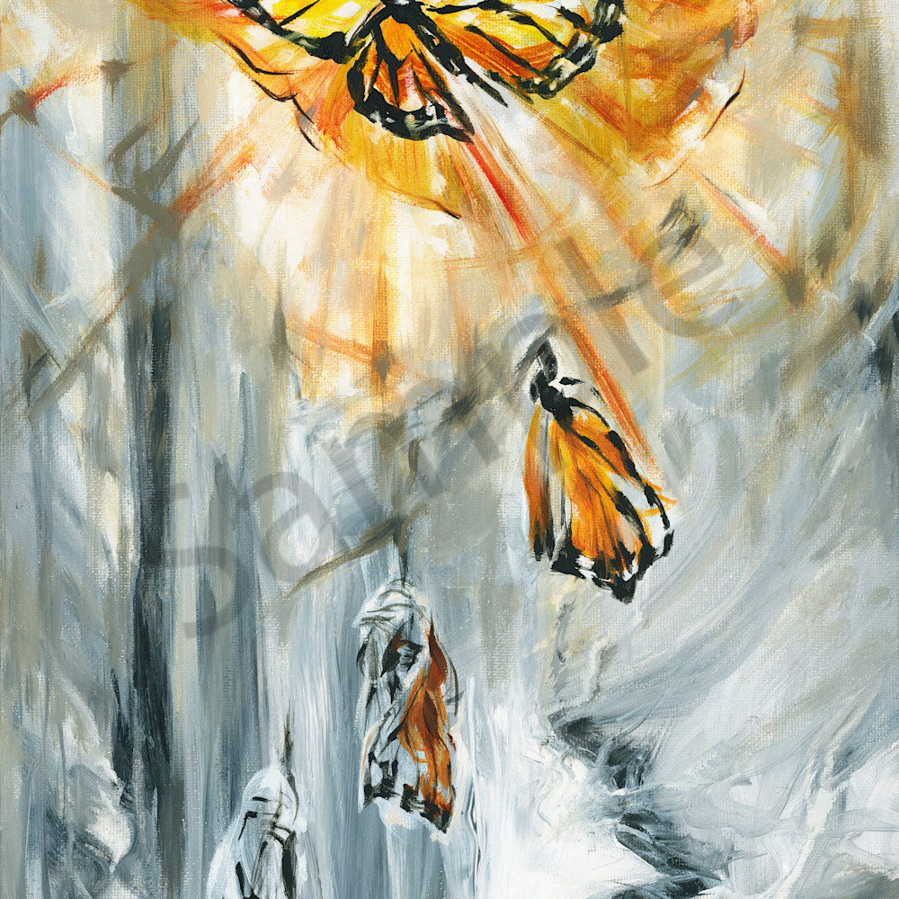 Monarch emerging by melani pyke jq9mfp