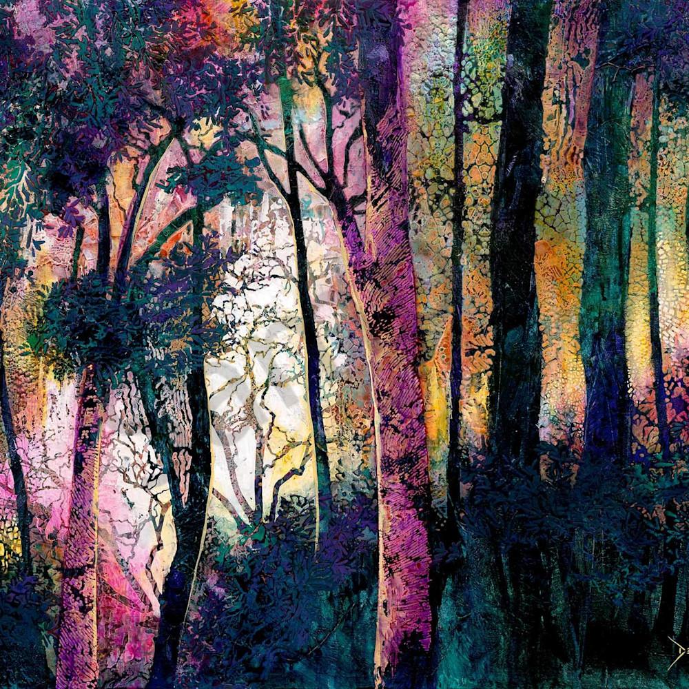 D gillett 116 evening forest 2000px hnqbb5