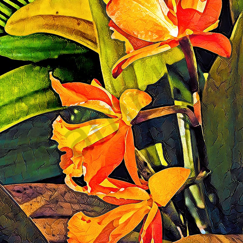 Orange orchids ii botanical series florida awaf9t