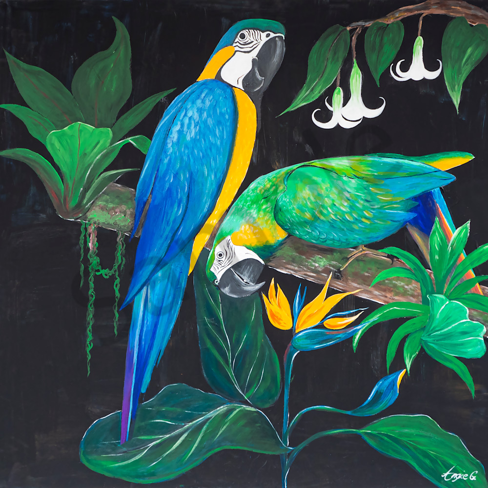 Parrots by angela gu%cc%88nther tmteod