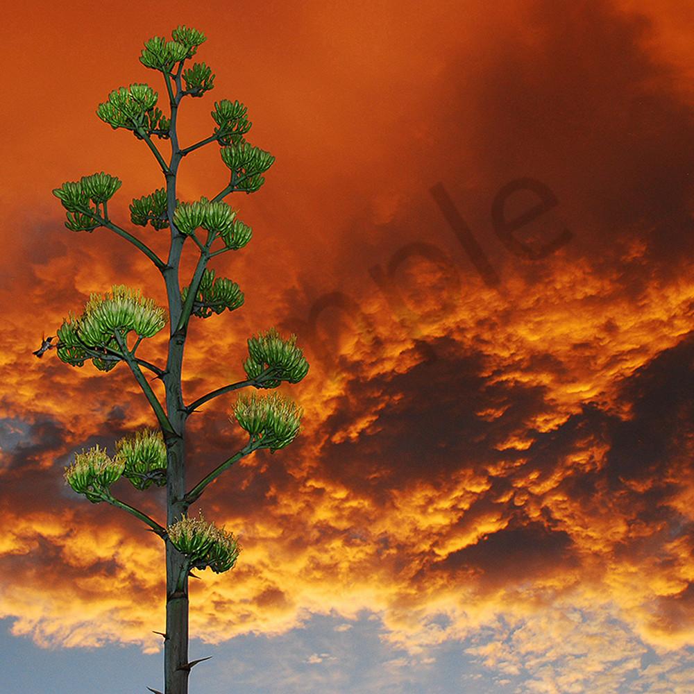 Sunset of the century in sedona arizona n3irco