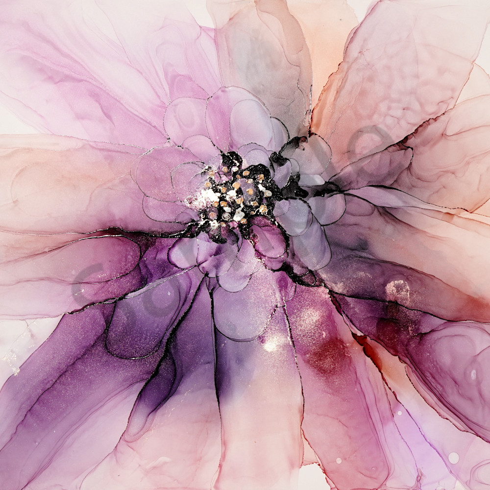 In full bloom by june corstorphine upj4p2