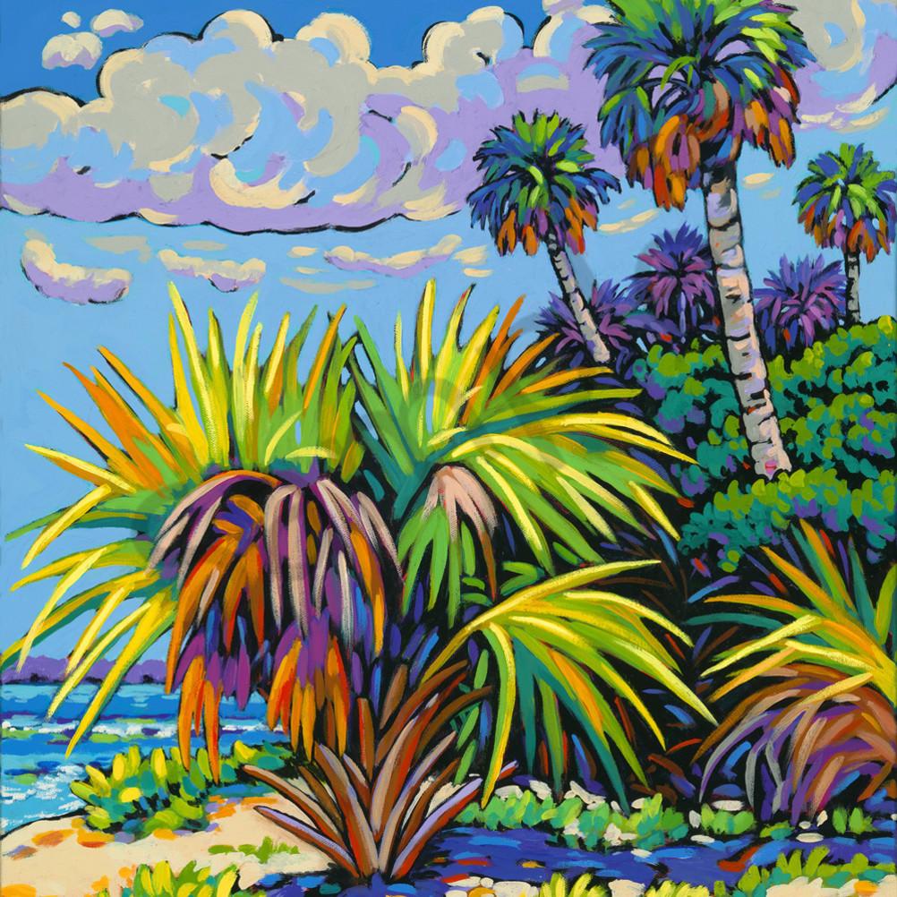 Mid afternoon light l website canvas print nzngvm